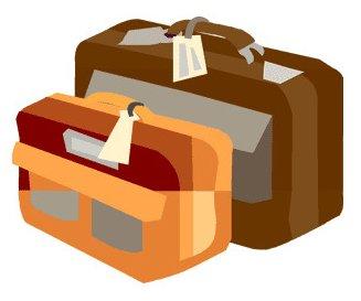 ピーチの手荷物